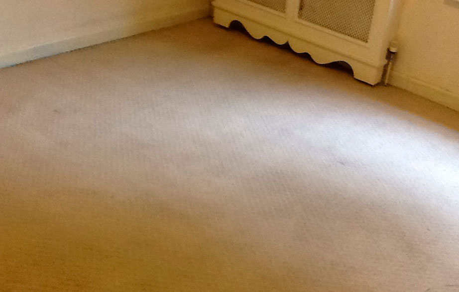 Clean carpet - After